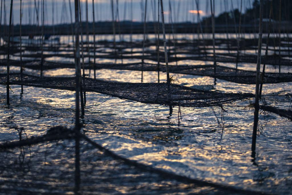 【佐賀/漁業バイト/海苔養殖】有明の海苔を支える、海苔漁師アルバイトを募集