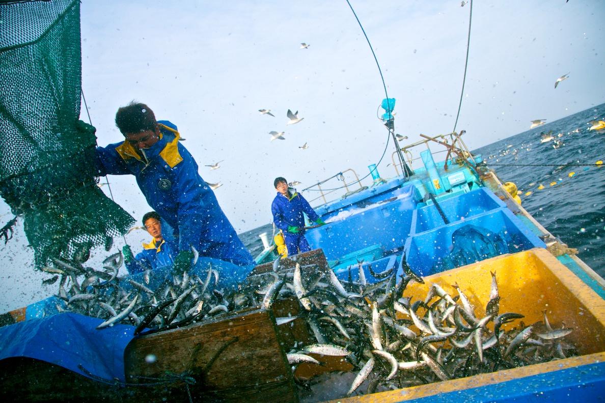 漁業の仕事を知る、水産業リクルートフェア!