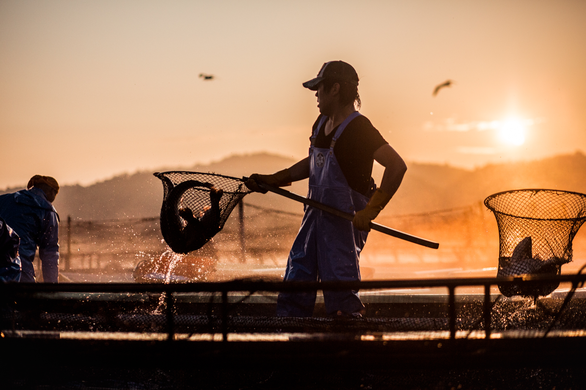 20140704_fishermans-17