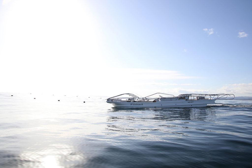 「ひとつ」のチームが繋ぎ、挑む。新しい海苔養殖のカタチ。