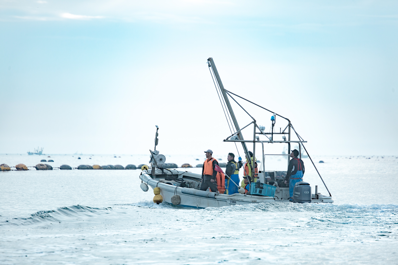 漁師の仕事を知る、短期研修プログラム「牡鹿漁師学校×TRITON SCHOOL-牡蠣養殖編-」
