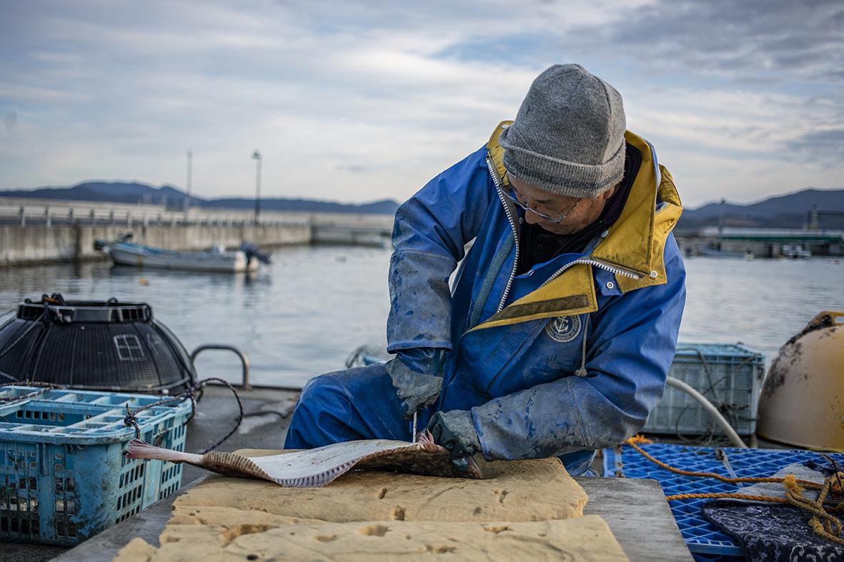 第8回 漁師の仕事を知る、1泊2日の短期研修プログラム「TRITON SCHOOLー田代島編ー」