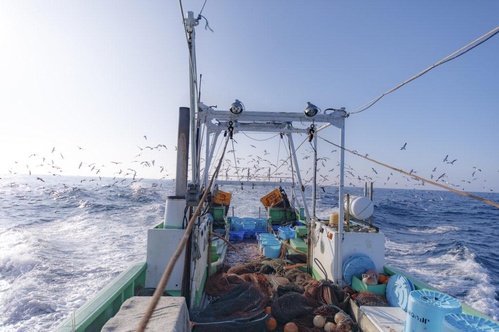 【福島/漁師求人/漁船】栄養豊富で肉厚な魚「常磐もの」の新しい歴史が始まる
