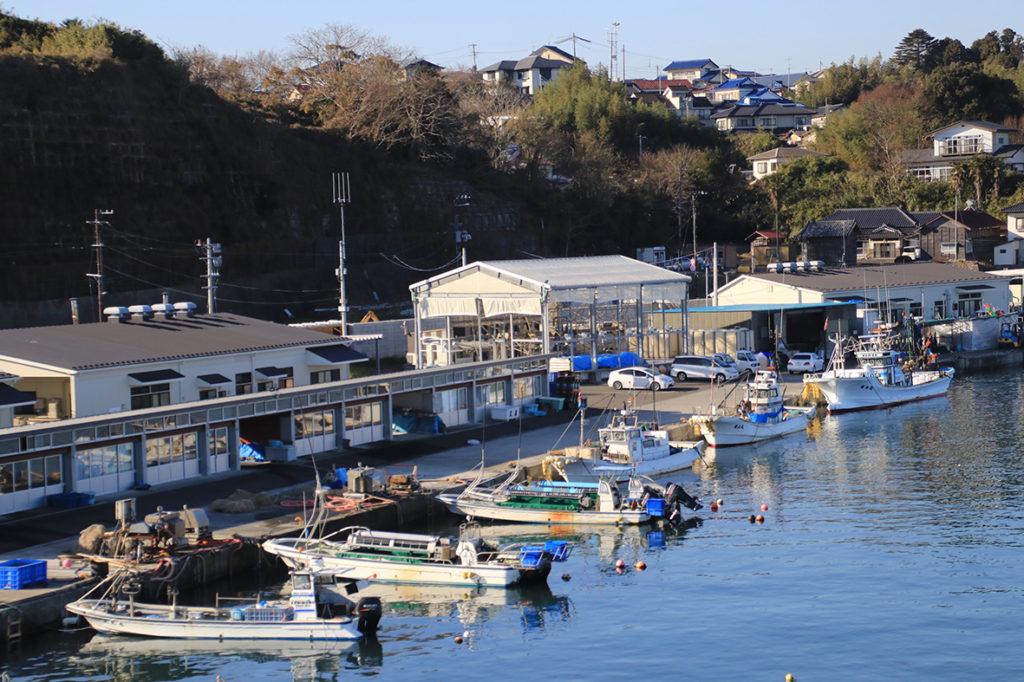 保護中: 【恵比須グループ】七ヶ浜の未来指針  – 協業という漁業の新しいスタイル –