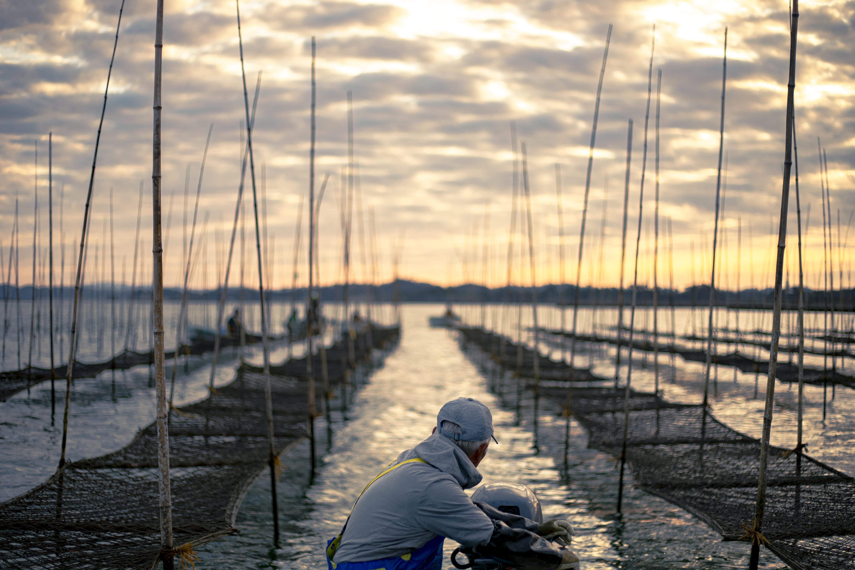 市と漁師が手を組み、若者の夢を後押し。  地域おこし協力隊から海苔漁師になろう。