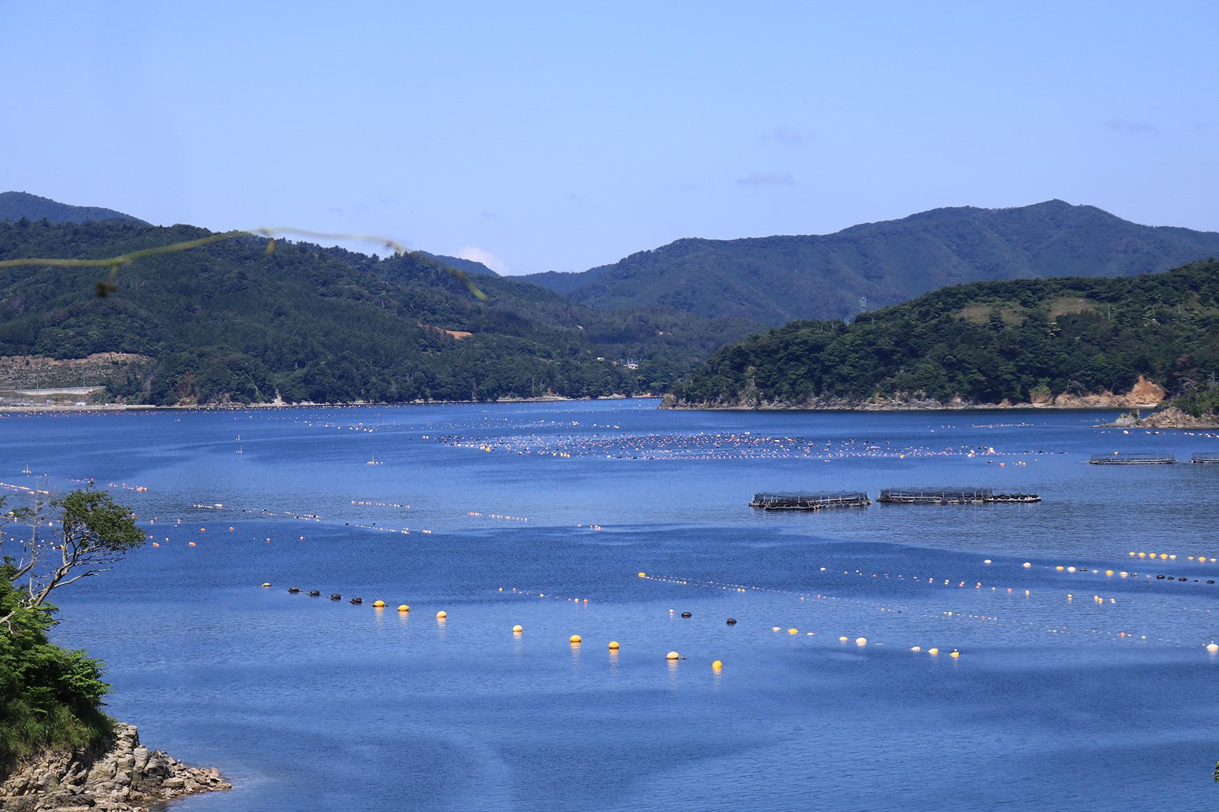 【漁師入門】沿岸の海を見てみよう〜海に浮いているアレなぁに?〜
